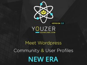 codecanyon-19716647-youzer-new-wordpress-user-profiles-era-file-and-license