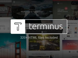 terminus-multipurpose-wordpress-theme