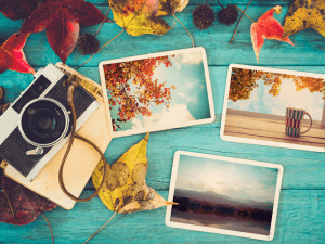 Photo album in remembrance and nostalgia in autumn