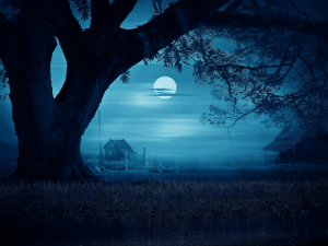 Blue moment in a misty night