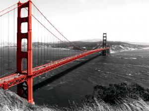 The Golden Gate Bridge on a monochromatic background