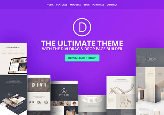 Most-Popular-WordPress-Themes-Divi.1