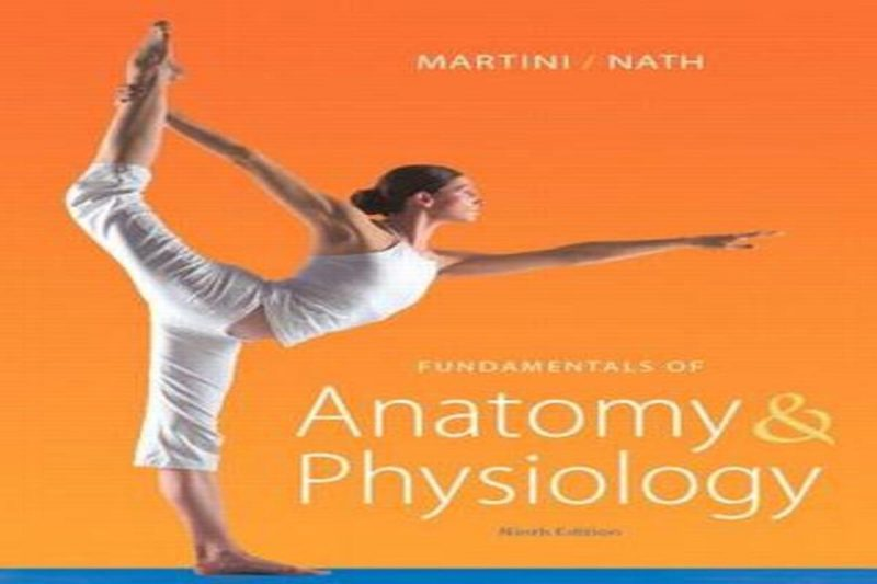 Fundamentals of Anatomy and Physiology.2015