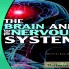 The Brain and the Nervous System (The Human Body)