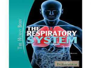 The Respiratory System (The Human Body)