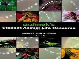 Grzimek's Student Animal Life Resource . Insects and Spiders