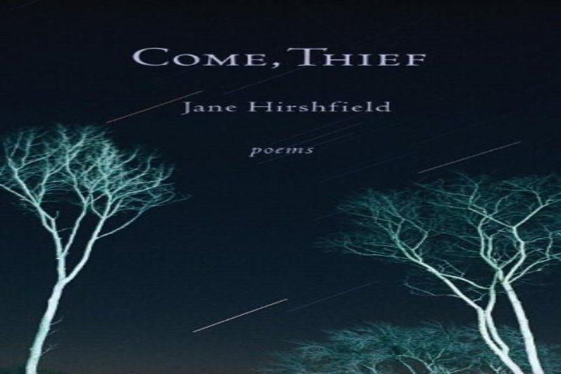 Come, Thief: Poems